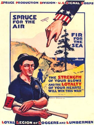 'Spruce for the air -- fir for the sea' poster, Gerald W. Williams Collection
