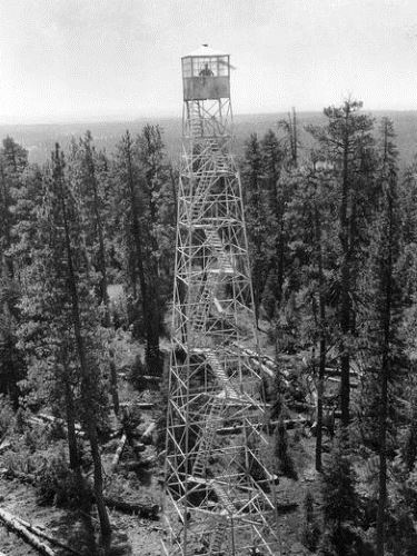 CCC enrollee Thales Bay of Orin, Illinois, at work on a fire tower, Gerald W. Williams Collection