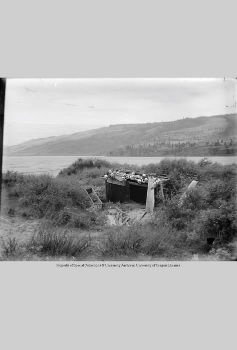 Skulls on wooden burial structure at top of Memaloose Island, Columbia River, Angelus Studio Collections, Western Waters Digital Library