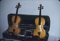Matched set of violins, rear view
