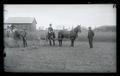 Men forking hay and a horse pulling a hay rake on the college farm, OAC class of 1889.