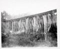 Railroad trestle / person
