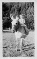 John Welty (son of H. A.) 25 months, sitting on donkey
