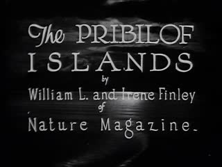 The Pribilof Islands