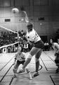 1977 volleyball