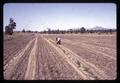 Superintendent Malcolm Johnson in plowed field, Central Oregon Branch Experiment Station, circa 1965