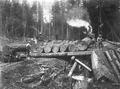 Loading platform with logs next to logging railroad
