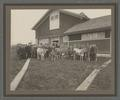 Cattle Judging class at Oregon Agricultural College, class of 1908
