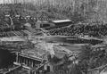 Sawmill and flume that carries lumber from sawmill to planing mill four miles away at Bridal Veil, Oregon (B. V. Lumber Company)