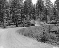 Log truck on Arvid Nelson Road, a main haul road in the Ochoco National Forest
