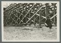 Woman jumping the broad jump on track behind bleachers, circa 1925