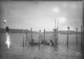 Men in boat taking salmon from fish trap on Columbia River.  J.F. Ford photo.