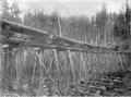 Locomotive pushing railroad cars with logs over wood trestle