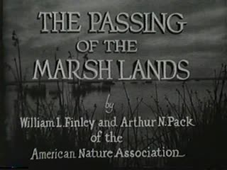 The Passing of the Marshlands